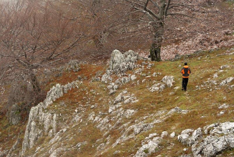 Trekking i Mehedinti berg i höst arkivfoton