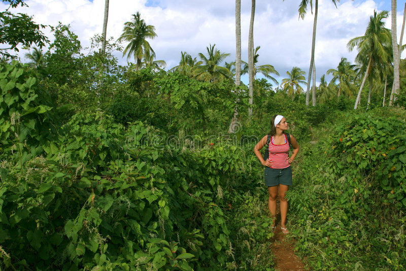 Download Trekking Through The Jungle 2 Stock Image - Image: 654547