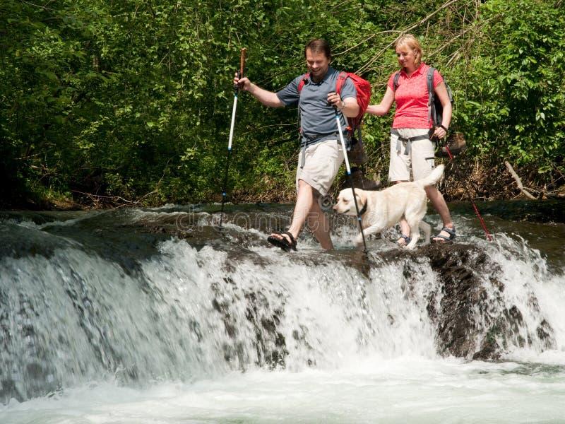 Trekking met hond royalty-vrije stock afbeeldingen
