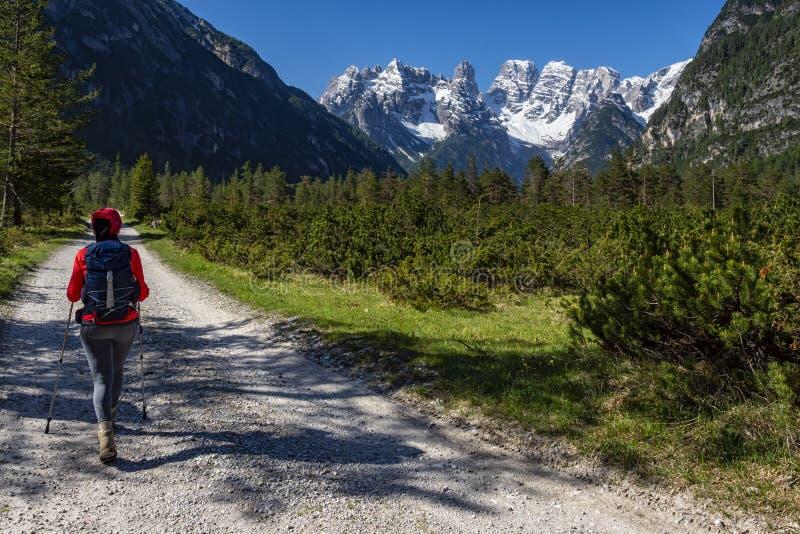 Trekking na área das dolomites de Val di Landro fotografia de stock