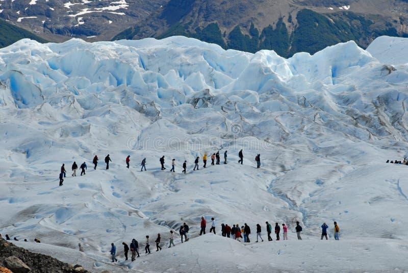 Trekking na geleira de Perito Moreno, Argentina. imagens de stock