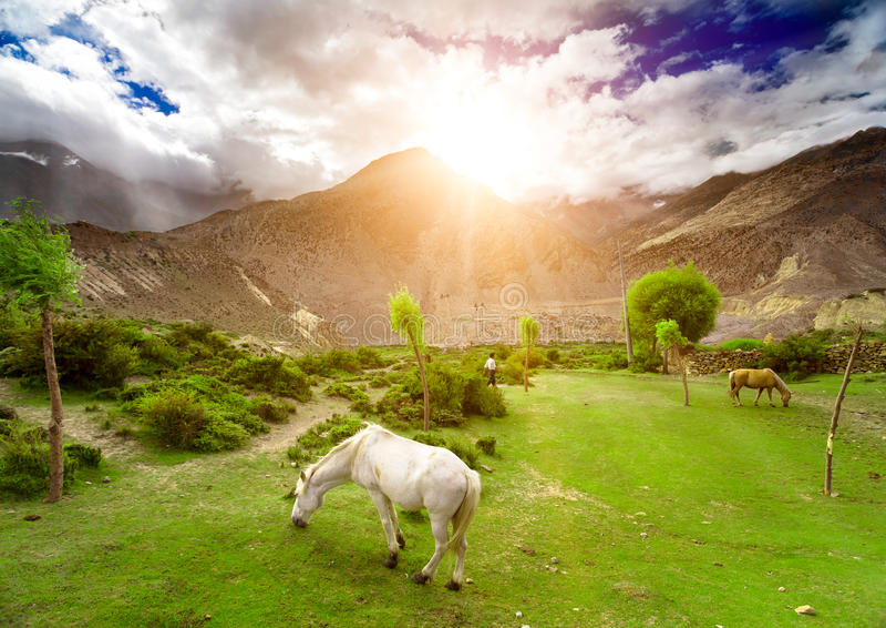 Download Trekking in Nepal stock foto. Afbeelding bestaande uit nepal - 54087808