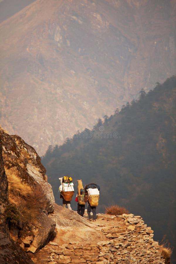 Trekking in Nepal lizenzfreies stockbild