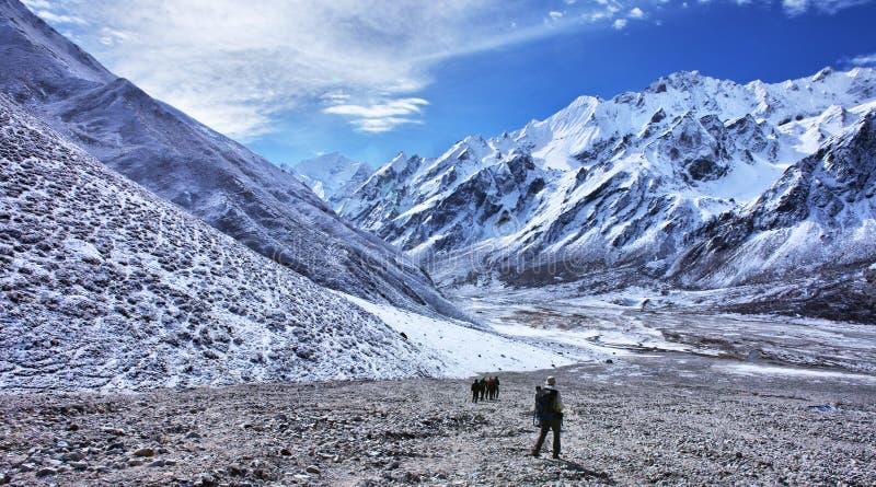 Trekking in Nepal, vallei Langtang stock foto's