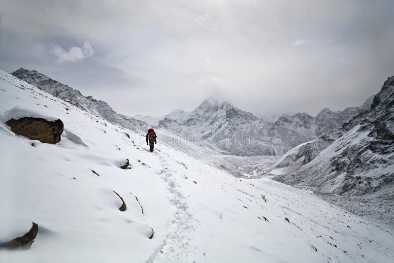 Trekking no parque nacional de Sagarmatha, Nepal imagens de stock royalty free