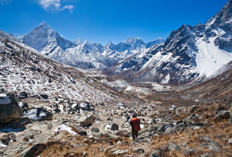 Trekking no parque nacional de Sagarmatha, Nepal imagem de stock