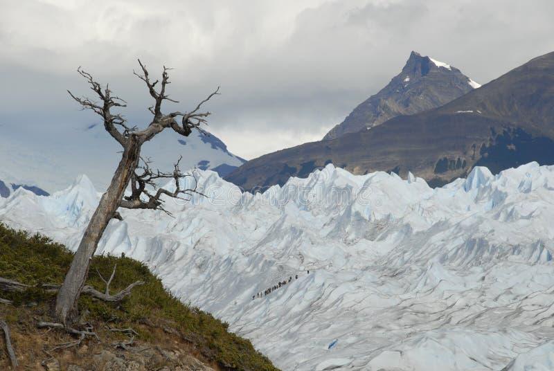 Trekking on Perito Moreno glacier, Argentina. royalty free stock photography