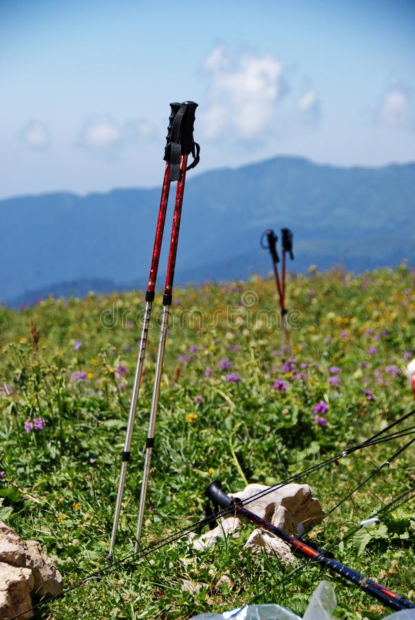 Trekking poles on a flower meadow in the mountains. Equipment for tourism. Trekking in the mountains. royalty free stock photos