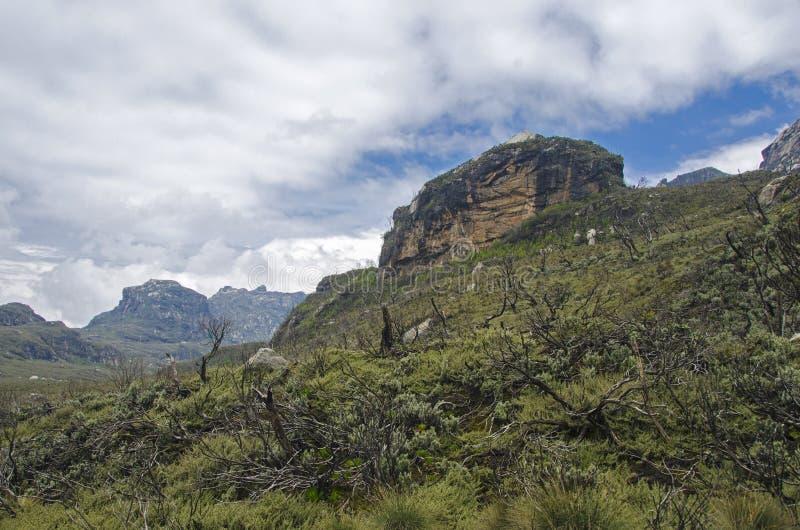 Trekking w Rwenzori zdjęcia stock