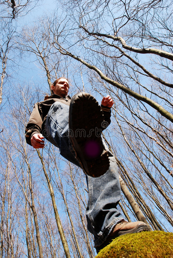 Trekking In The Woods Royalty Free Stock Image