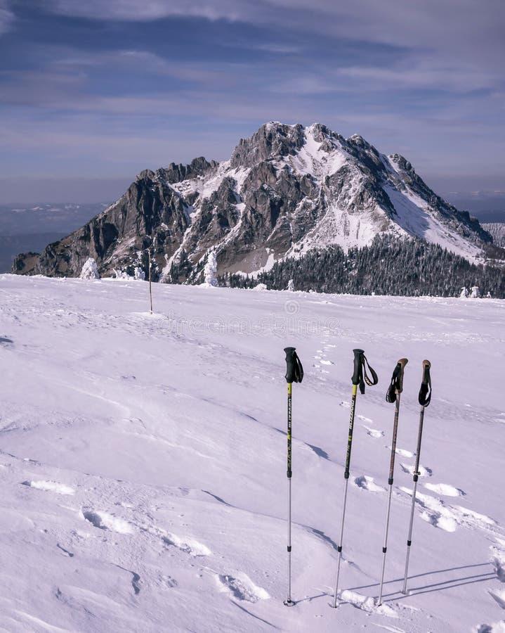 Trekkingspolen op ijs met rotsachtige bergen stock foto