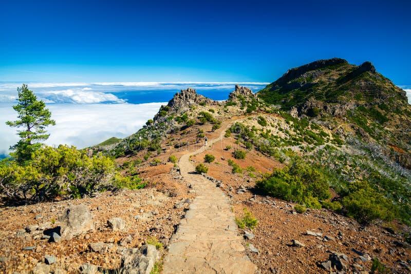 Trekkingsweg zu Pico Ruivo lizenzfreies stockbild