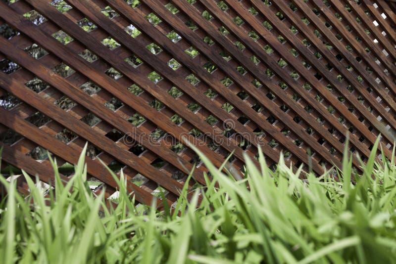 Treliça de madeira rústica na forma de um corredor em um assoalho de pedra e em uma grama verde imagem de stock royalty free