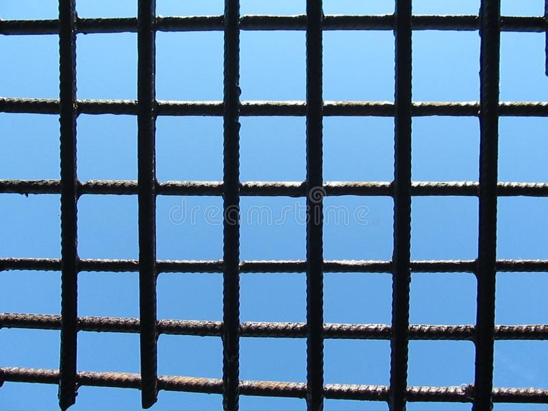 trellis photo stock