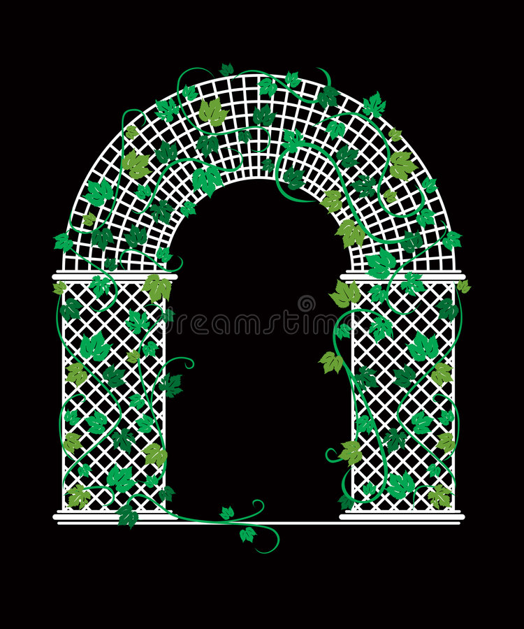 Trellis with Climbing Grape Vines vector illustration