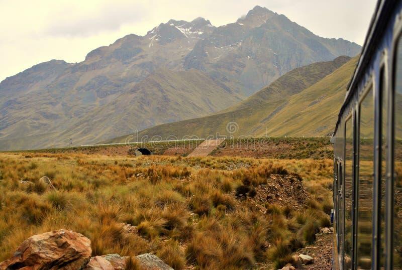 Trem através dos Andes fotografia de stock royalty free