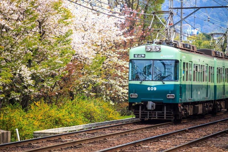 Trem com o sakura beatutiful na estação de mola imagem de stock royalty free