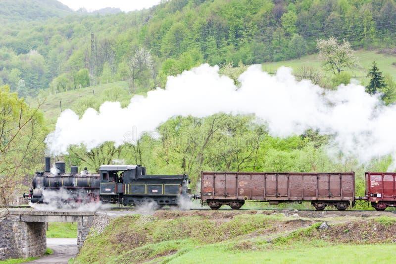 trem de mercadorias do vapor & x28; 126 014& x29; , Resavica, Sérvia fotografia de stock
