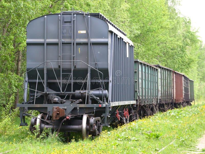 Trem de mercadorias na trilha de estrada de ferro coberto de vegetação com a grama fotografia de stock royalty free