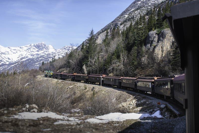 Trem do Alasca horizontal foto de stock royalty free