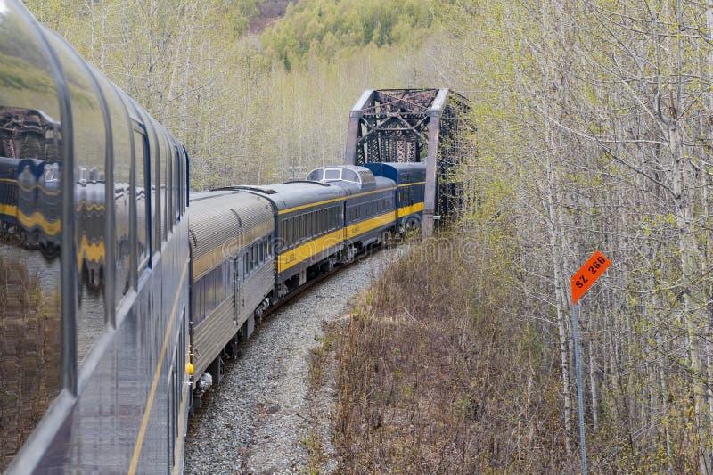 Trem na floresta fotos de stock