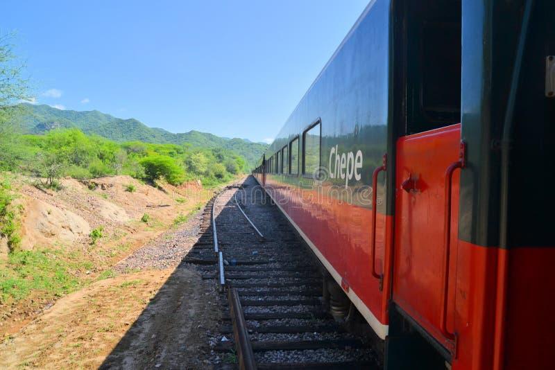 Trem na garganta de cobre, México do EL Chepe fotos de stock royalty free