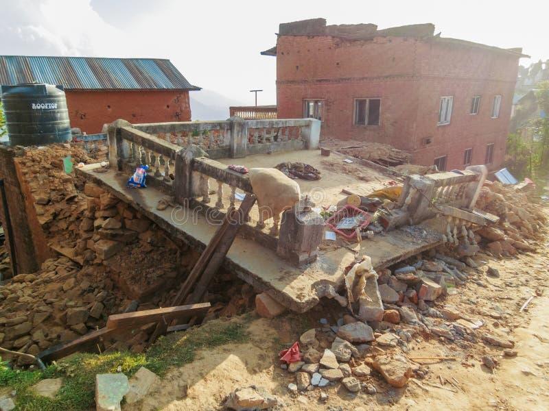 Tremblement de terre du Népal images libres de droits