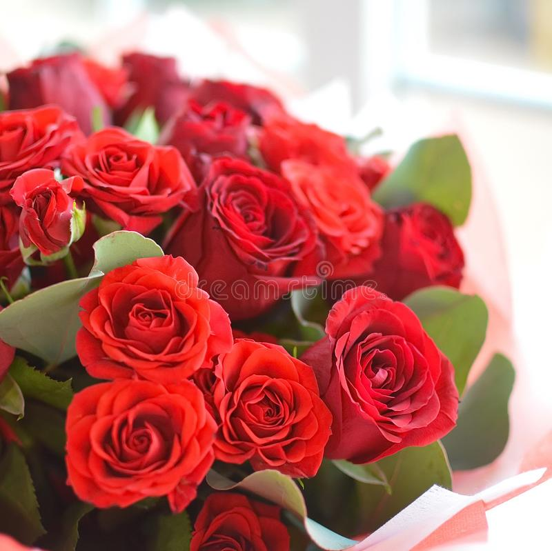Tremendous bouquet of red roses. Composition for flower shop, a card or a background stock image