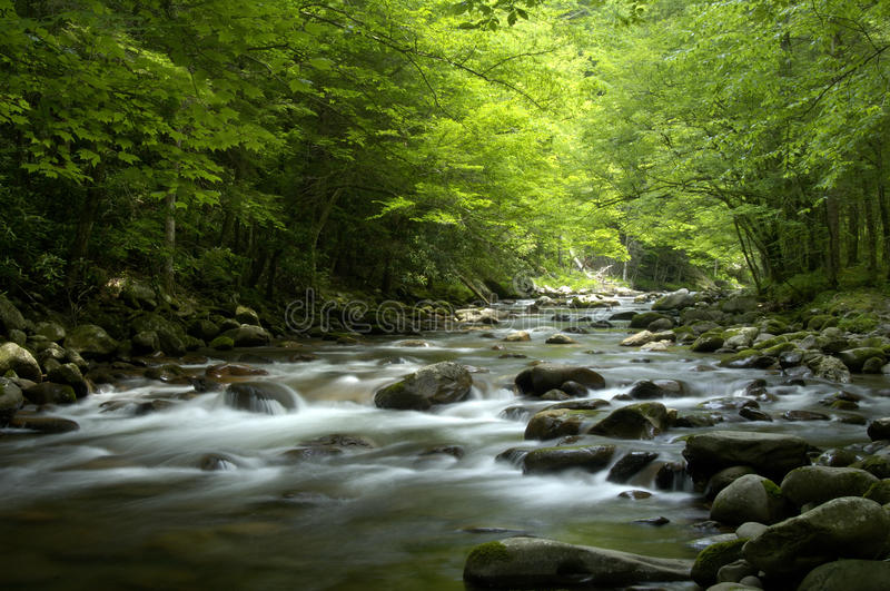 Tremont at Great Smoky Mountains National Park, TN USA. Cascades in the middle prong of the Little Pigeon River in Tremont of Great Smoky Mountains National Park stock image