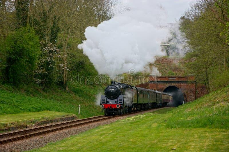 Tren 'Camelot 'del vapor que emerge del túnel fotos de archivo libres de regalías