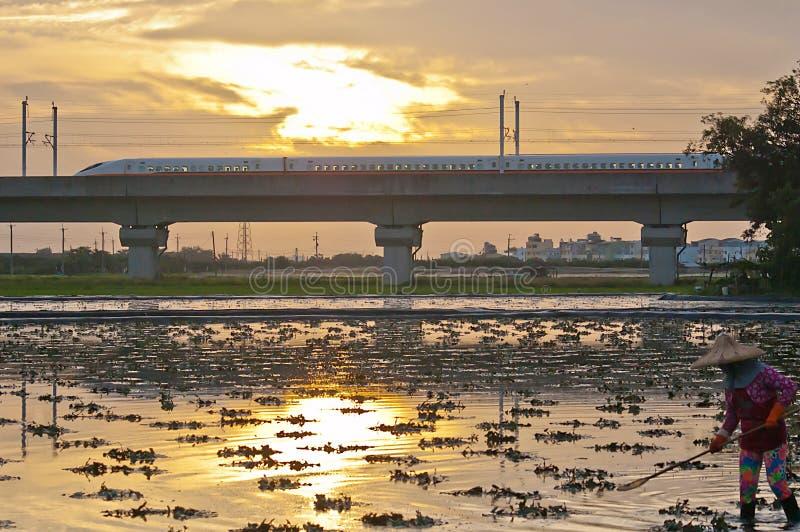 Tren de alta velocidad y tierras de labrantío de Taiwán fotografía de archivo