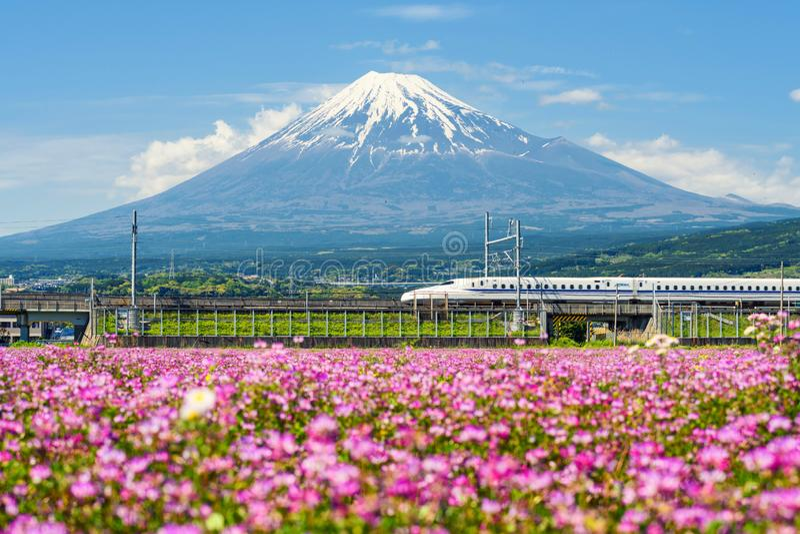 Tren de bala de Shinkansen en la montaña Fuji fotografía de archivo