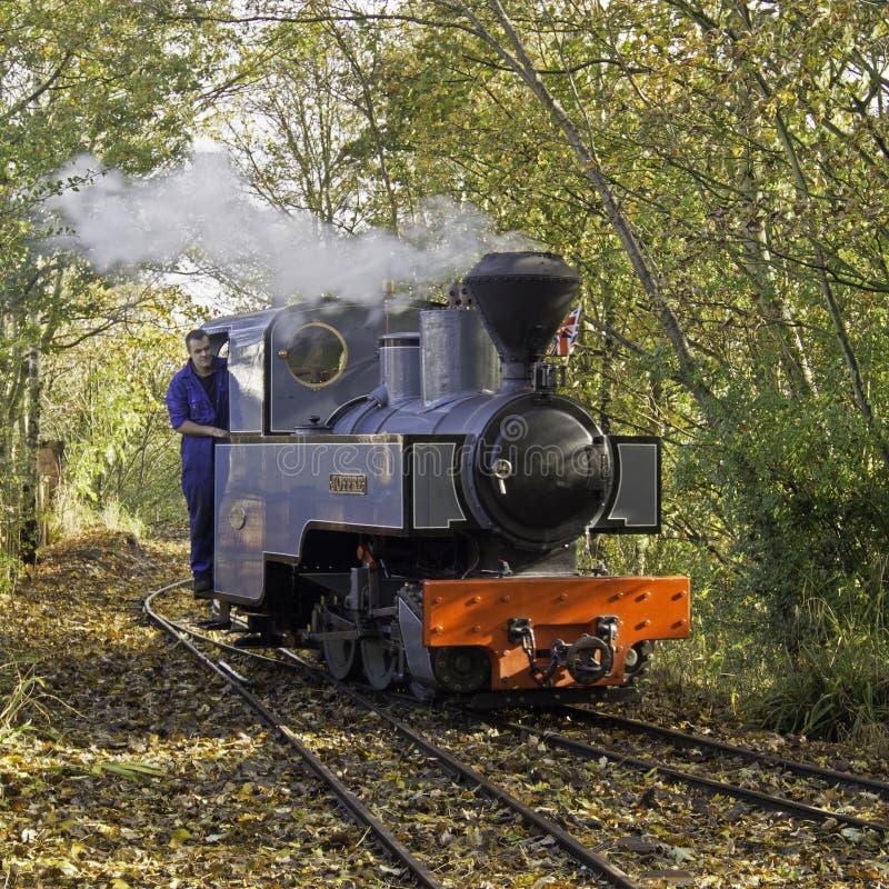 Tren del vapor de WLLR fotos de archivo