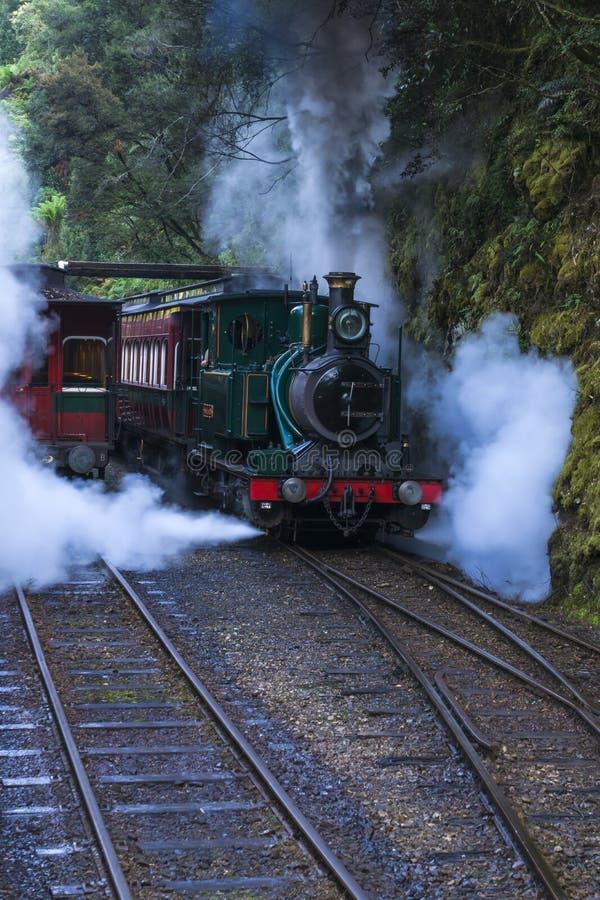 Tren del vapor en selva tropical imagenes de archivo