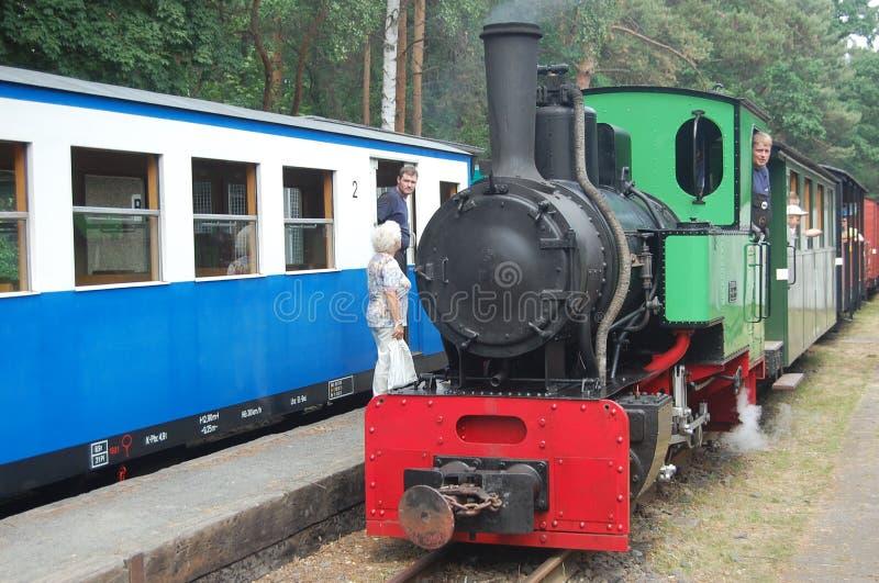 Tren ferroviario del vapor del indicador estrecho fotos de archivo