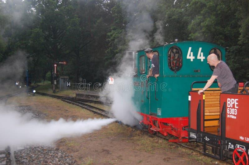 Tren ferroviario del vapor del indicador estrecho fotos de archivo libres de regalías