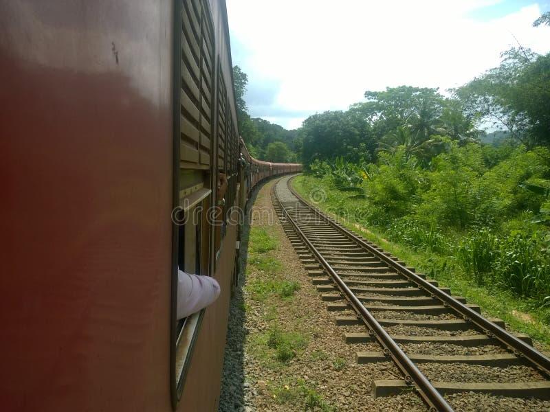 Tren hermoso en Sri Lanka imagen de archivo