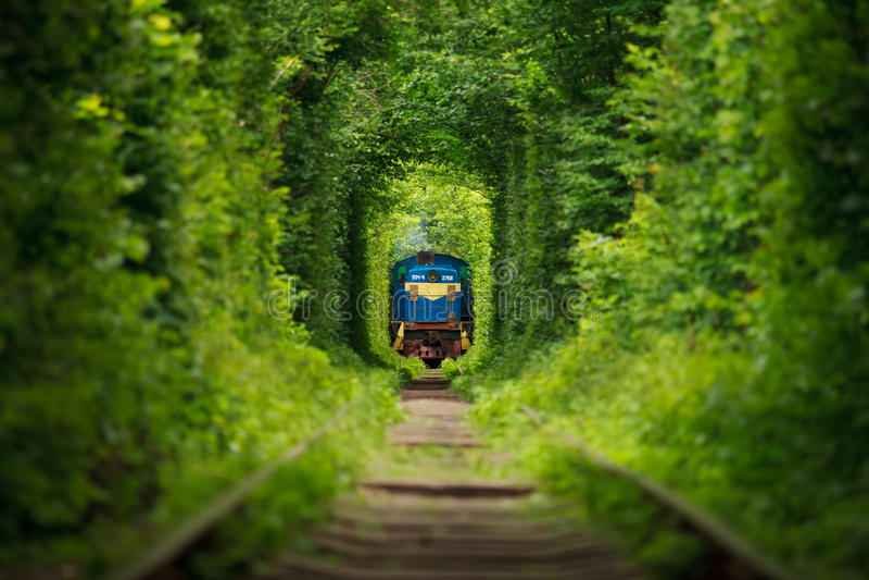 Tren secreto 'túnel del amor' en Ucrania Verano foto de archivo