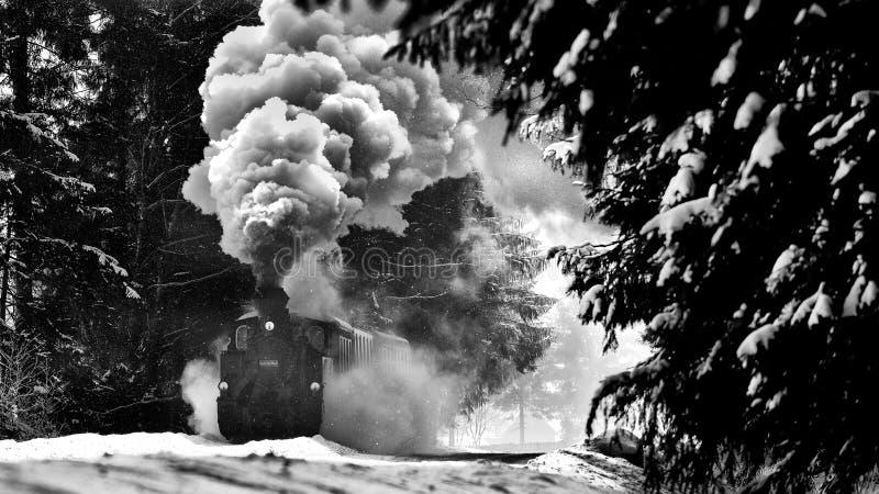 Tren viejo del vapor en el invierno de Rumania, condado de Bucovina foto de archivo
