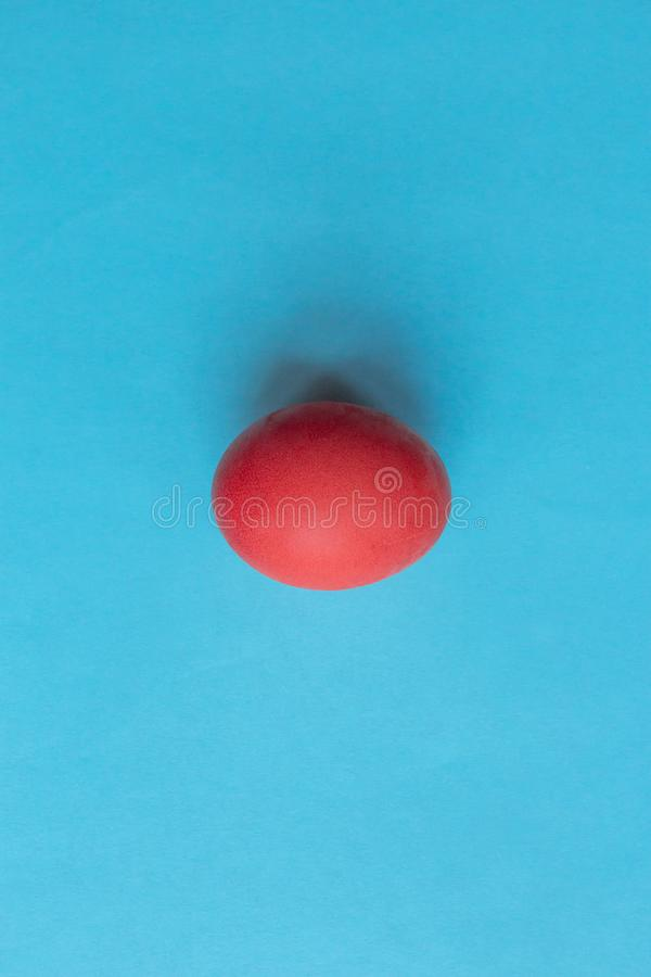 Trend colored pink chicken egg on a blue pastel minimalistic background stock photography