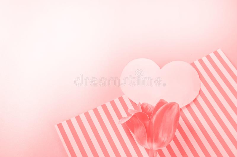 ПTrend, the concept of live coral color 2019. Tulips and heart shape. Valentine's day. Color palette stock images