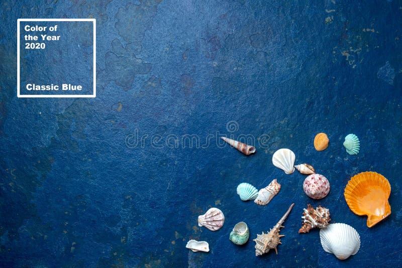 Trendy 2020 θαλασσινά κλασικό φόντο με θαλάσσια βλήματα Χρώμα του έτους στοκ εικόνα με δικαίωμα ελεύθερης χρήσης