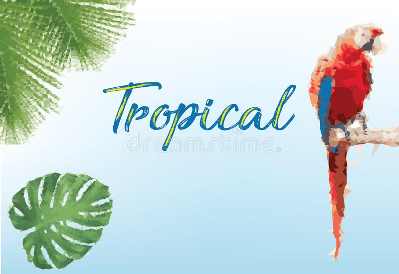 Trendy background with tropical with summer royalty free stock photo