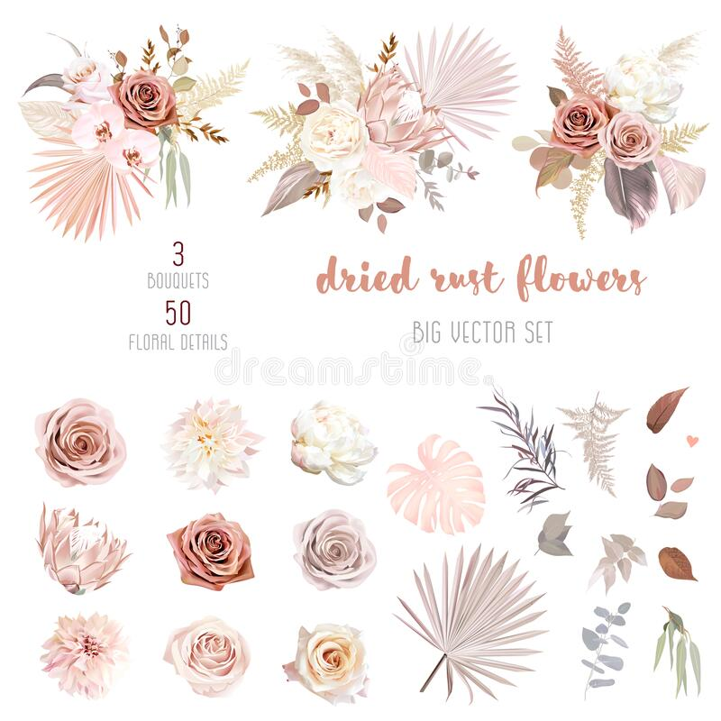 Free Trendy Dried Palm Leaves, Blush Pink And Rust Rose, Pale Protea Royalty Free Stock Photos - 208926828