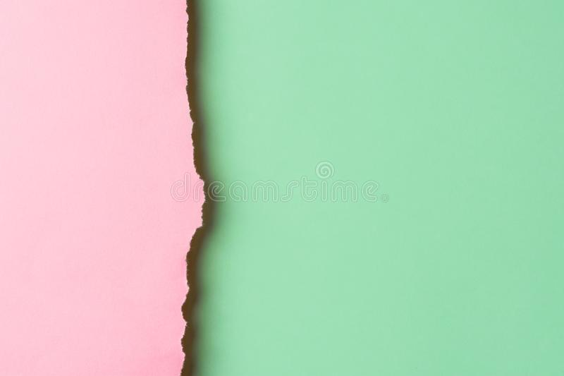 Trendy duotone pink chartreuse green paper background with textured torn frazzle edge. Side border. Poster banner invitation stock image