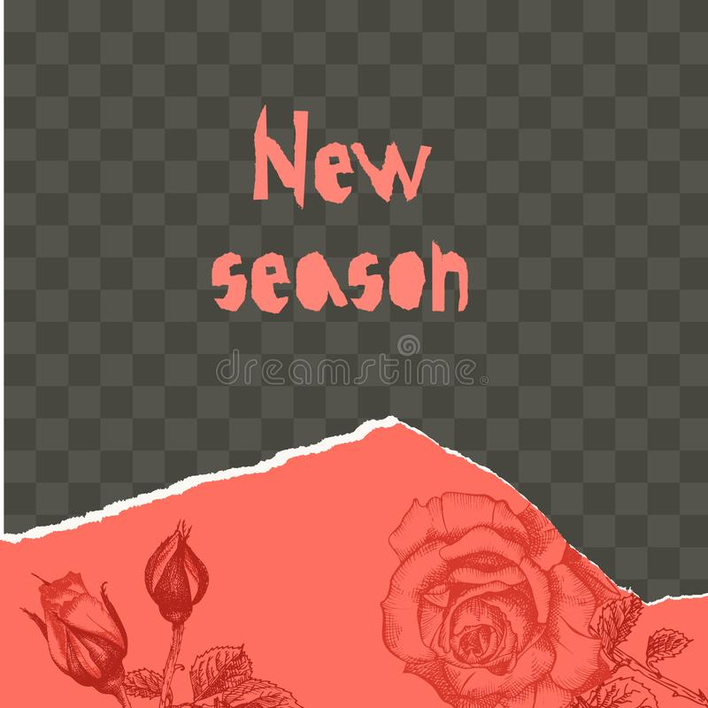 Free Trendy Easy Editable Template For Social Media Post In Torn Paper Style. Roses Flower Theme Creative Design Background Royalty Free Stock Photos - 145273628