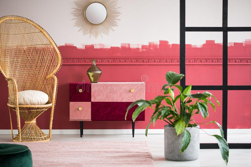 Trendy living room with wicker peacock chair and handmade pastel pink and burgundy chest of drawers. Trendy living room interior with wicker peacock chair and stock images