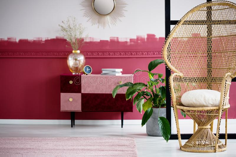 Trendy living room interior with wicker peacock chair and handmade pastel pink and burgundy chest of drawers. Trendy living room interior with wicker peacock royalty free stock photo
