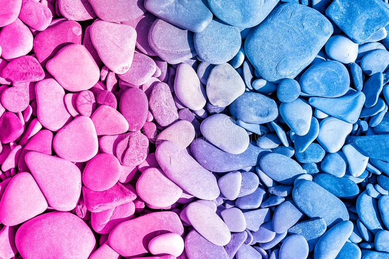 Trendy neon colour background from sea pebbles stock images