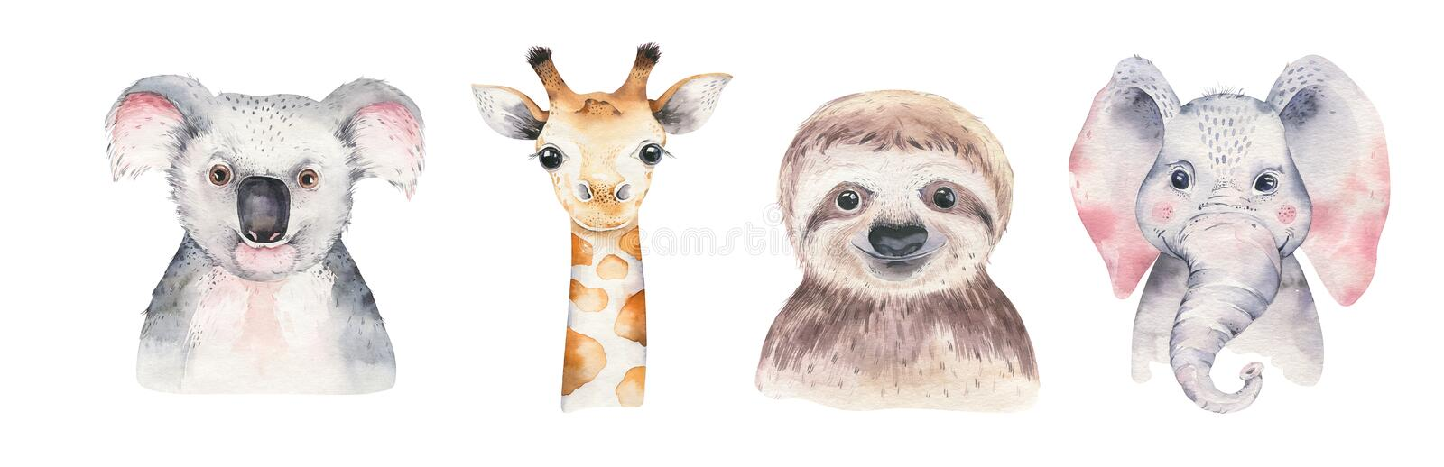 A poster with a baby panda, sloth, giraffe and koala. Watercolor cartoon elephant tropical animal illustration. Jungle stock photography